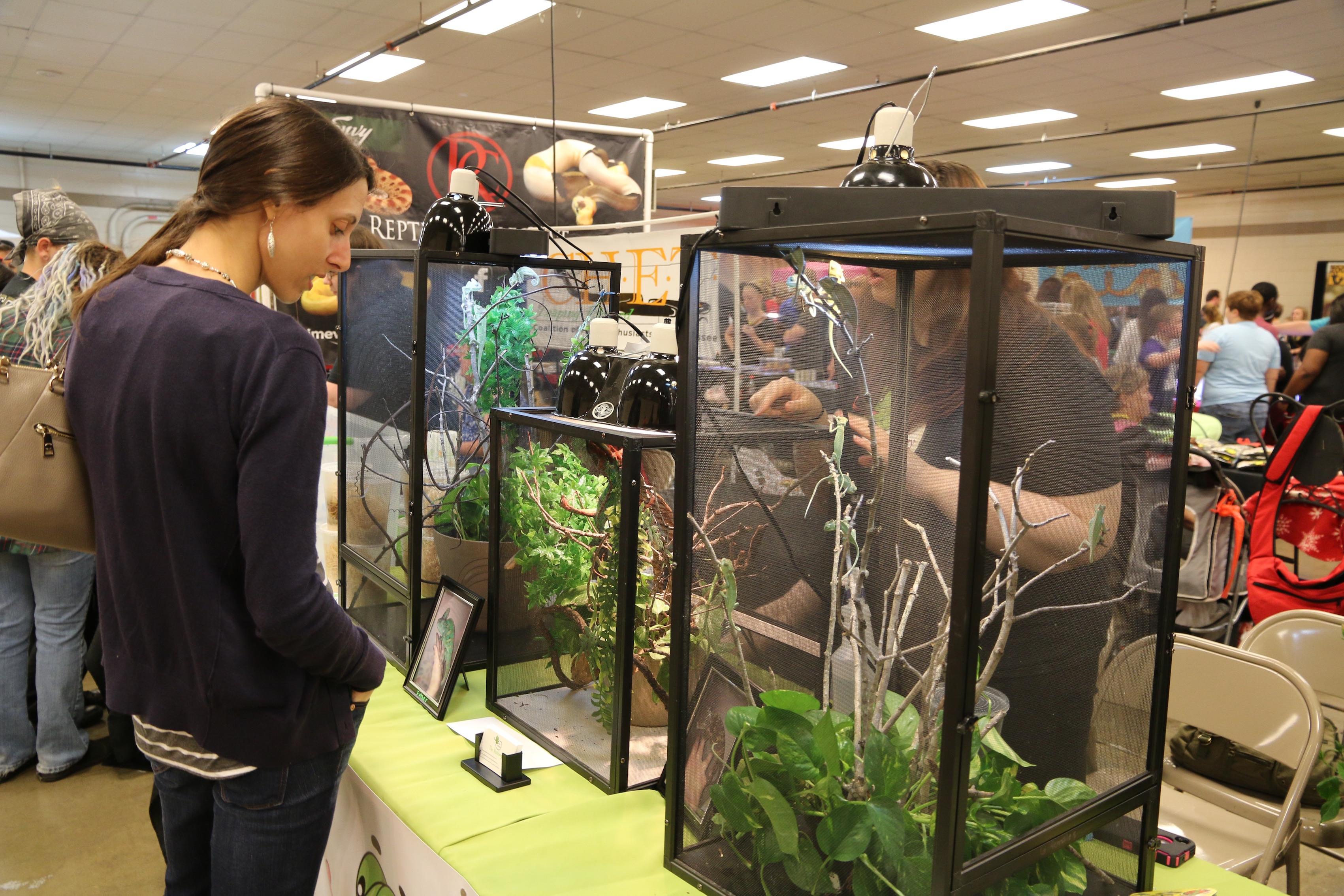 Vendors2 – Exotic Pet Expo